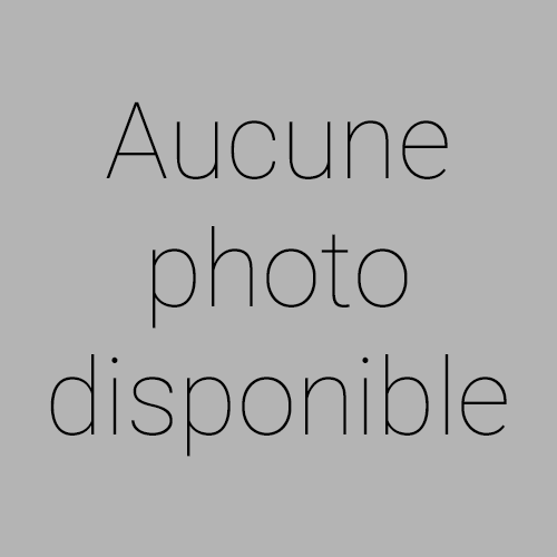 Renault CLIO - IV 1.2 16V 75 Authentique